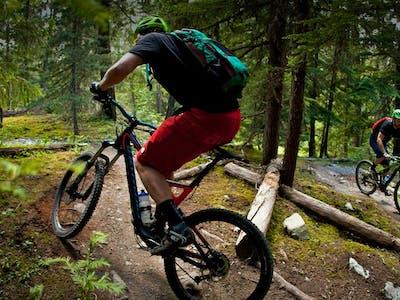 Switchback mountain biking