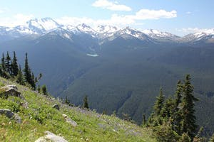 View of alpine meadow, and mountain peaks near whistler