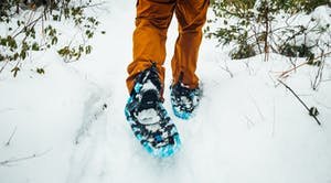 View of someone walking away on snowshoes