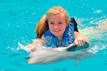 Person riding dolphin