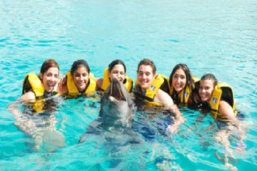group of people with dolphin