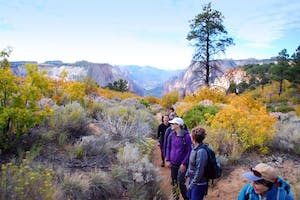 guided hike in fall east zion adventures