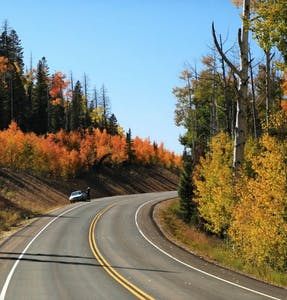 fall scenic drive to cedar mountain