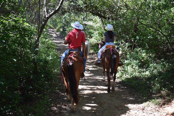 Horseback Riding to Las Chorreras Waterfall