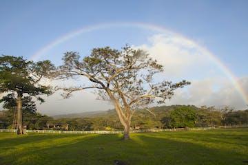 Rincon De La Vieja National Park rainbow