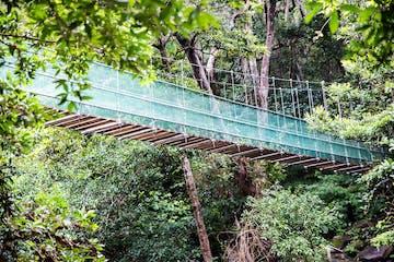 Rio Negro Hot Springs bridge