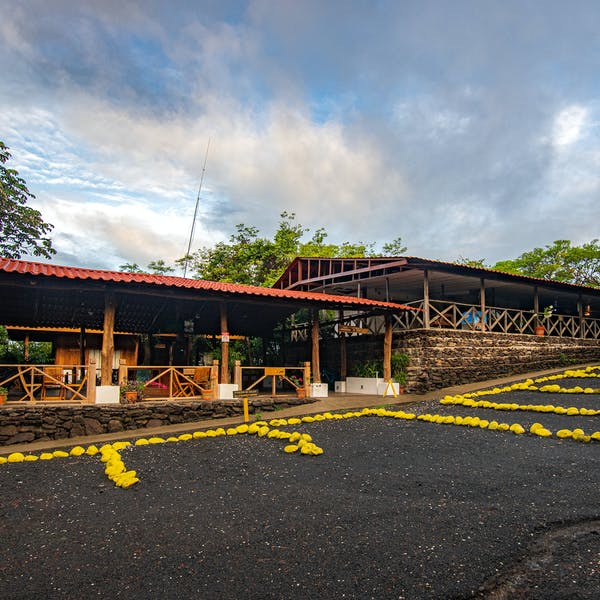 Hotel Hacienda Guachpelin parking area