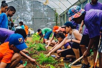 Organic Farm Workshop