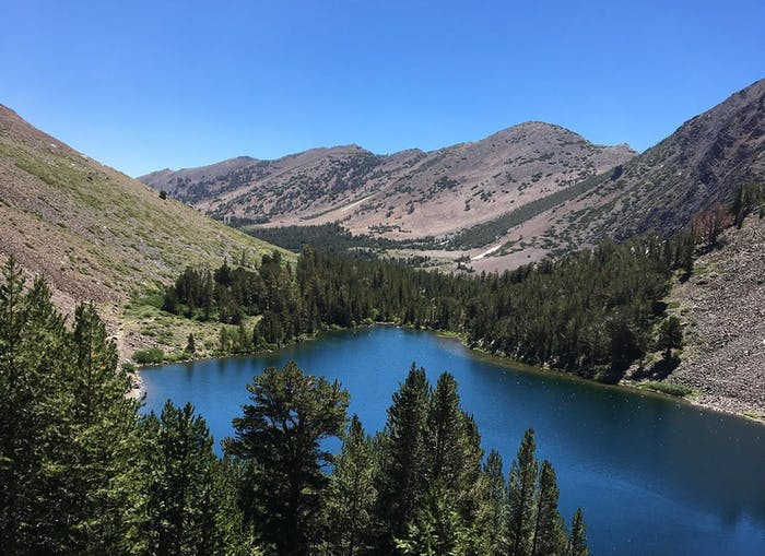 Yosemite Backcountry Spot Trips | Virginia Lakes Pack Outfit