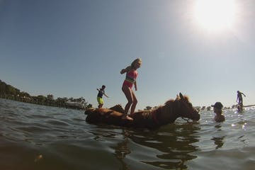 Young children balancing on horses standing in water