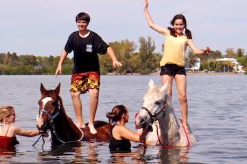 Horseback riding in sarasota fl