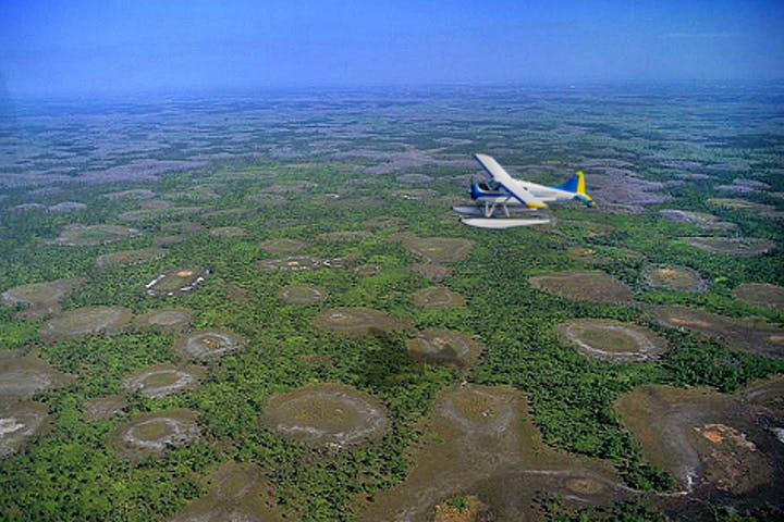 A seaplane over a swamp