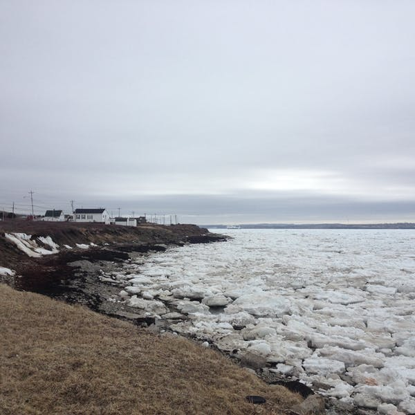 ice chunks lining the coast