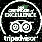 White TripAdvisor COE 2018