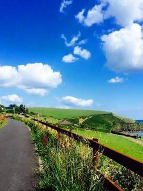 A view of the coast from the Waterford Greenway