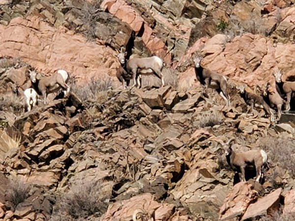 a pile of dirt in a rocky area