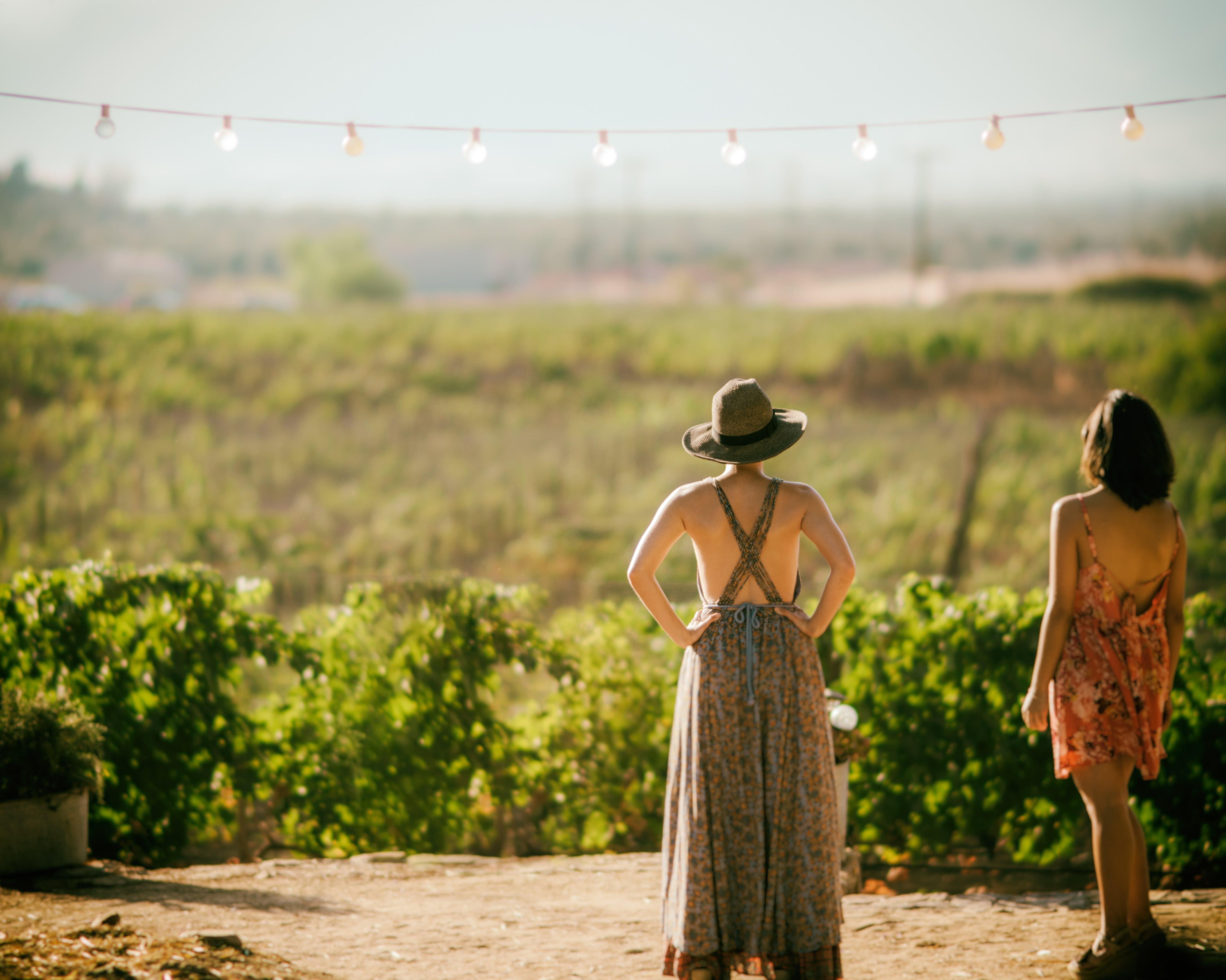 Wine Trip near Barcelona