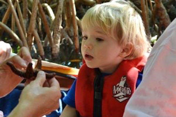 Little boy being shown a sea star