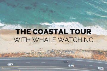 Coastal Tour Whale Watching