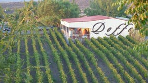 Doffo Winery