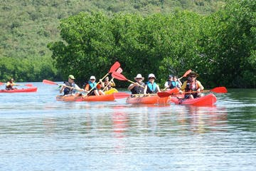 People enjoying a day kayak on the Fajardo Bio Bay