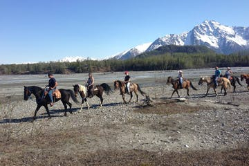 riders and horses enjoying their horseback tour