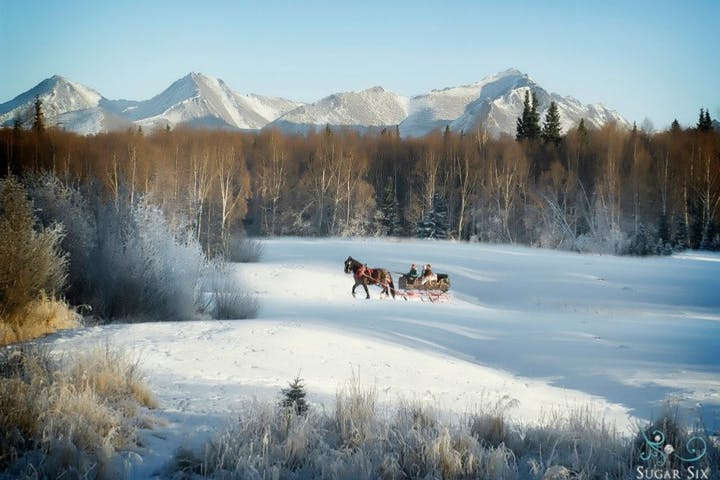 sleigh rides traveling through a clearing in the woods