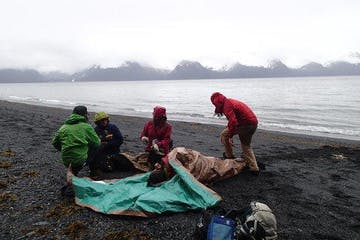 participants of Wilderness First Responder training near Seward, Alaska