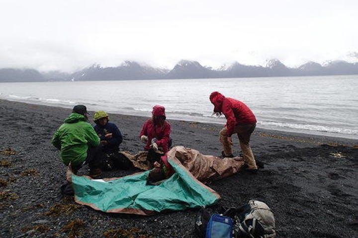 participants of Wilderness First Responder training near Seward, Alaska