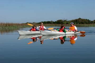 kayakers on water