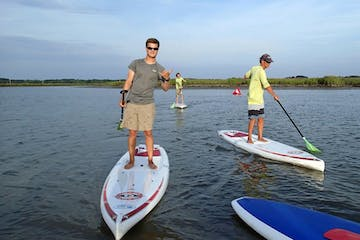 Paddle boarders