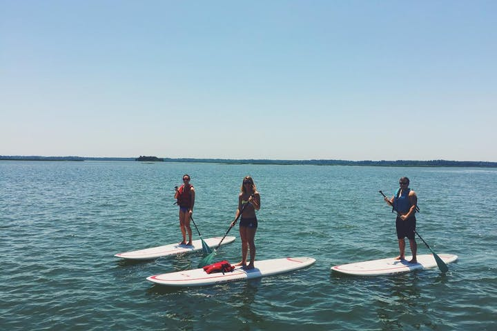 Three people on stand up paddle boards