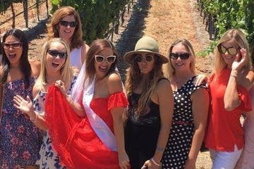 bridal party posing for pictures in vineyard