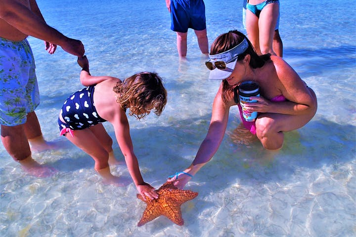 Group of people looking at large starfish in the sand