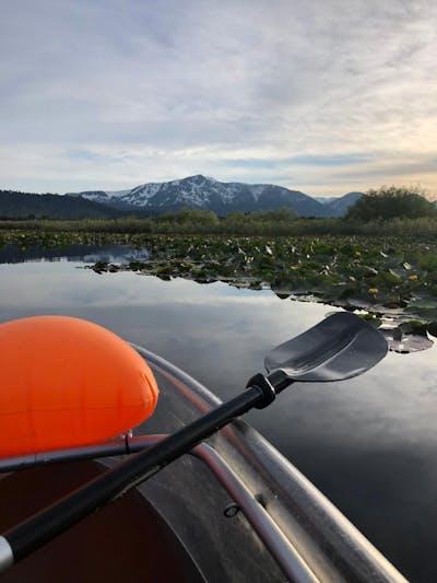 Eco Paddle Image 2
