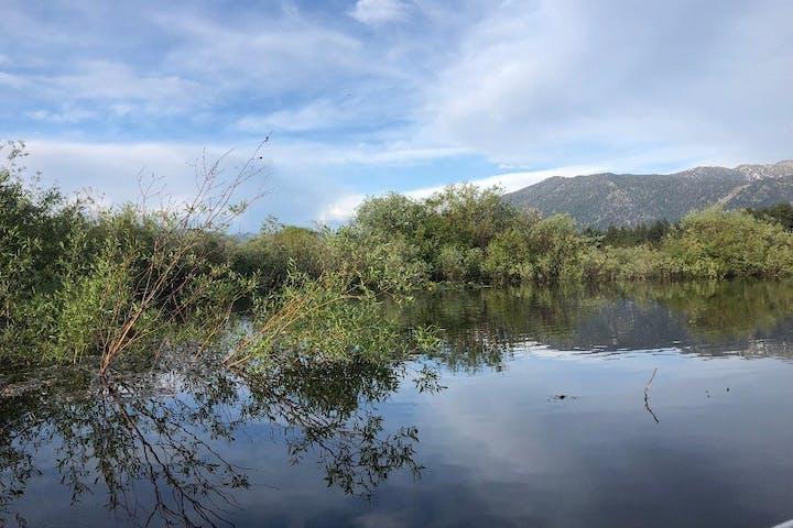 Eco Excursion Lake View