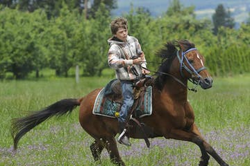 Little boy on horse