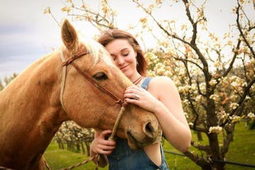 Woman petting horse in orchard