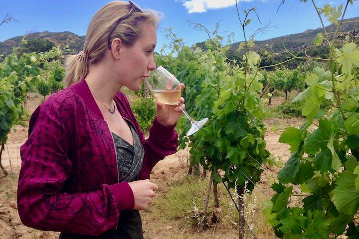 A girl in a vineyard