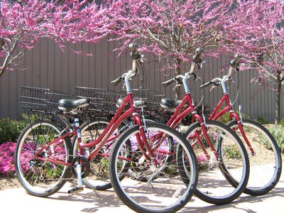3 red bicycles