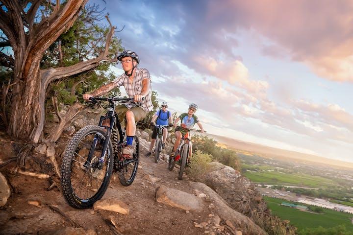 group of people mountain biking