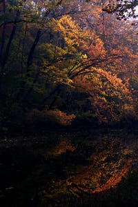 Fall along the C&O Canal - Anglers