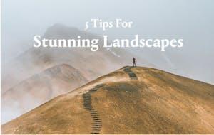 KEH Landscape Article image