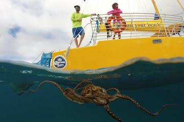 Manu Kai boat snorkeling