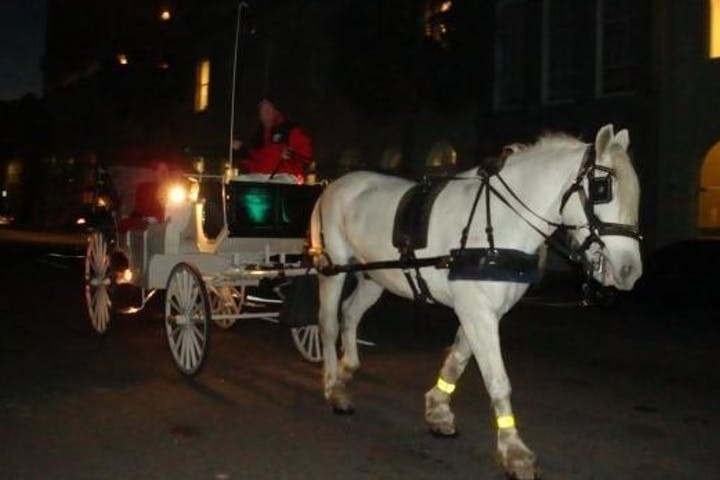 white horse pulling carriage at night