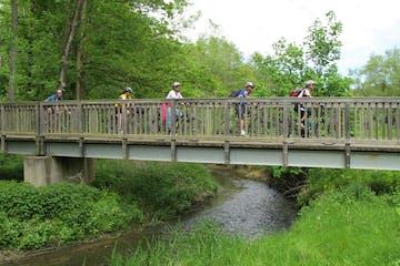 Warme Sonnenluft, sanfter Waldwind und eine Brotzeit im Wald: mit mehreren variantenreichen E-Bike Touren entdecken wir auf den Schlangenbader Waldradpfaden die luftige, waldreiche Gegend der Kurgemeinde.