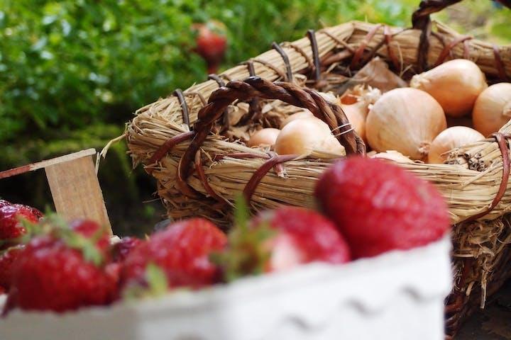 Zwei Körbe mit Obst und Gemüse