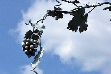 Spritztour mit weiten Ausblicken vom schönen Fachwerkort Eltville-Hattenheim in seine berühmten Weinbergslagen mit anschließender Vesper&Weinprobe.