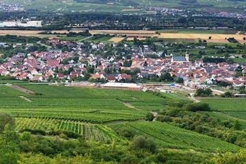 Radeln durch weites Weinland von Rheinhessen, durch beschauliche Dörfer, Bachtäler und Weinberge mit Blick zum Taunus und nach Frankfurt.