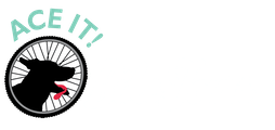 Ace It! Bike Tours
